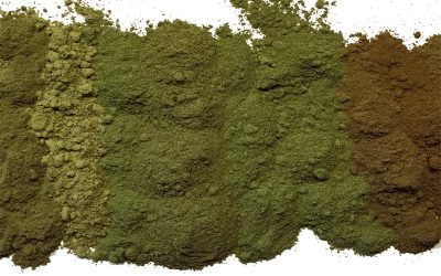 The 3 Kratom Strains: What Makes Them Different From Each Other